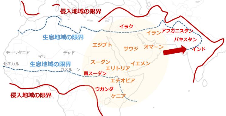 2020 発生 バッタ 地図 大量